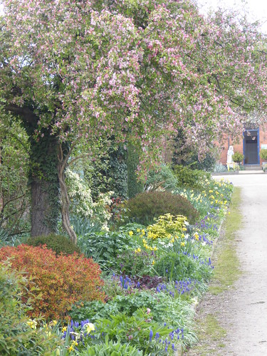 April - herbaceous border
