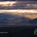 ~12PVR IMGP7870new sunrise