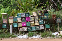 Mail Box. DK