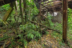Distillerie - Rust N' Green I