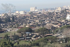 Pompei_2019_21