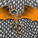 Dragon Flying (Digital)