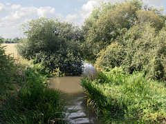 Photo of The River Thame at its junction with the River Thames, Dorchester-on-Thames, Oxfordshire