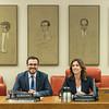 Comisión de Consumo. (28/02/2020)