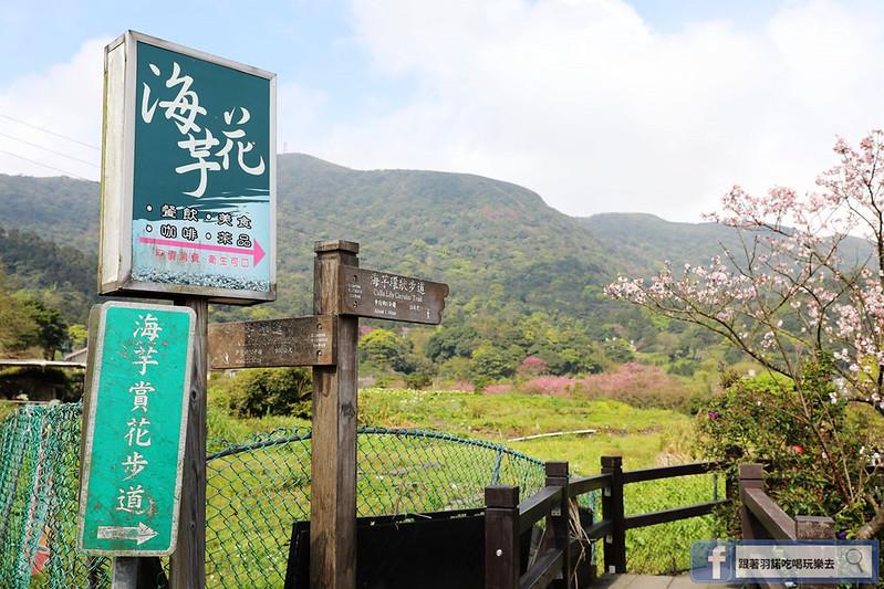 陽明山竹子湖012