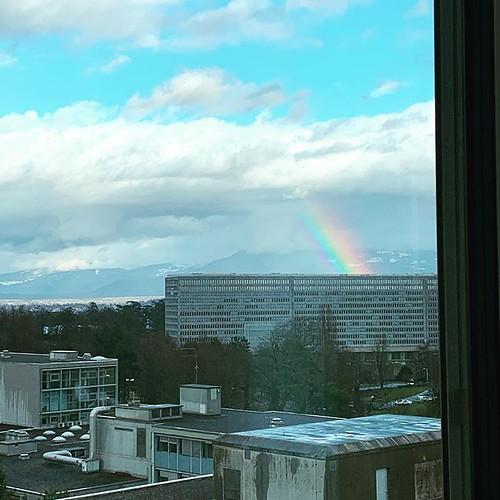 #fridayfeeling what's better than rainbows?