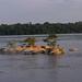 Small islands in Rio Negro, Brazil