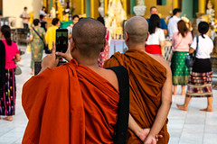 Monks at Shwedagon Pagoda