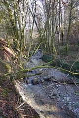 Le Viéran @ Hike along the Viéran river