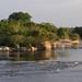Rock Shore - Rio Negro