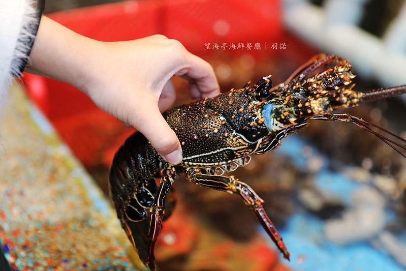 望海亭海鮮餐廳野柳風景區269