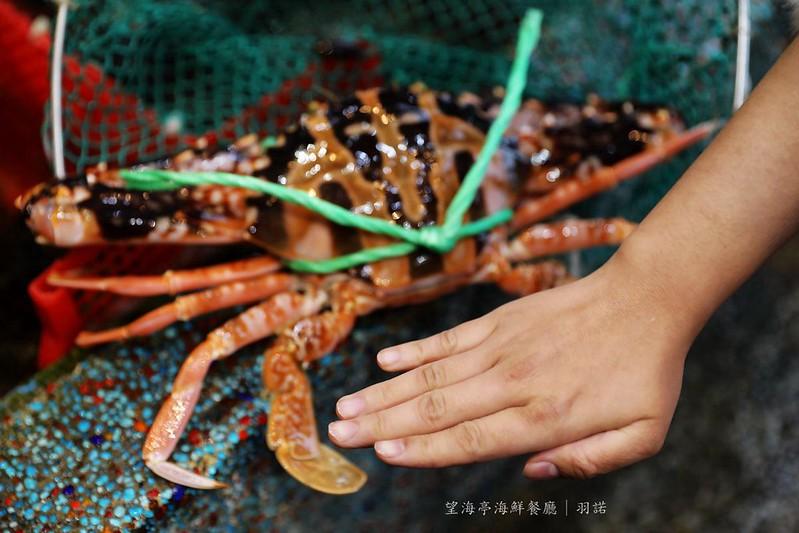 望海亭海鮮餐廳野柳風景區248