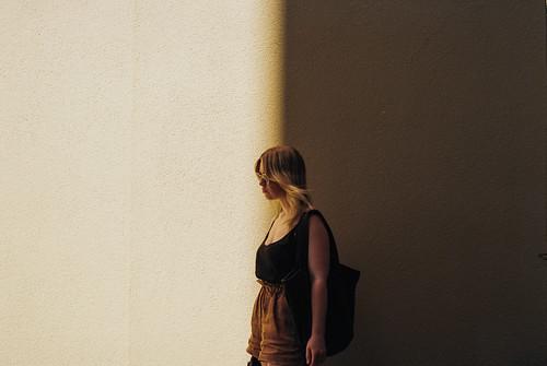 Wellington Shadows