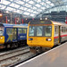 Lime Street Pacers