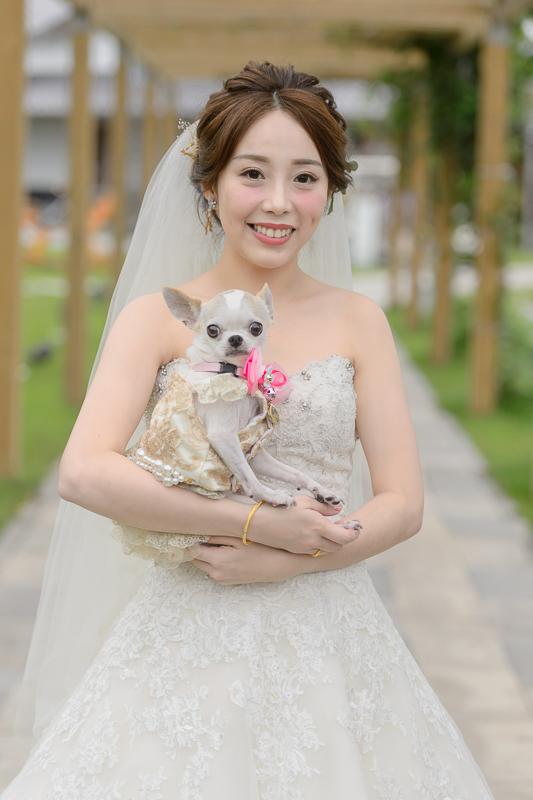 niniko,婚攝,綠舞婚宴,綠舞飯店婚攝,綠舞飯店,BSC_0067