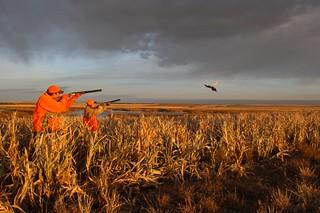 South Dakota Luxury Pheasant Lodge - Gettysburg 154