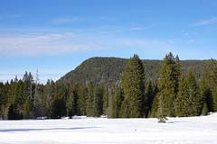 Plateau des Glières