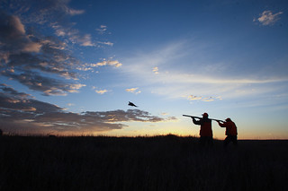 South Dakota Luxury Pheasant Lodge - Gettysburg 140