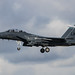 McDonnell Douglas F-15E Strike Eagle - United States Air Force - 91-0318 / LN