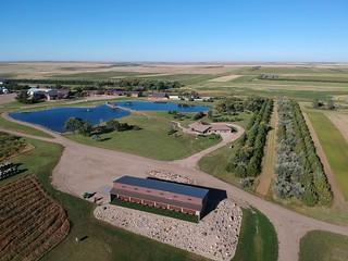 South Dakota Luxury Pheasant Lodge - Gettysburg 97