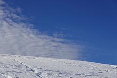 Snow @ Plateau des Glières