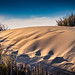 Sand Dune at the Beach at Moss Landing