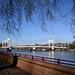 Albert Bridge / SW11