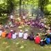 Excursiones para centros educativos Asturias
