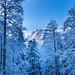 Winter in Austria - Trämpl