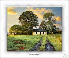 Photo of Shore Cottage, Sailen, Isle of Lismore