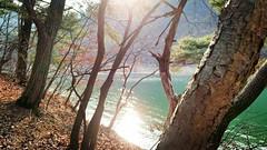 Anglų lietuvių žodynas. Žodis Korean Peninsula reiškia Korėjos pusiasalis lietuviškai.
