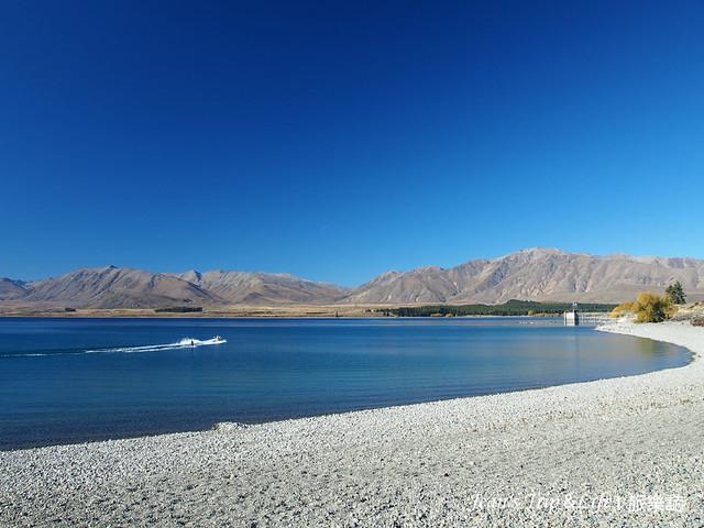 蒂卡波湖Lake Tekapo是南島熱門推薦景點