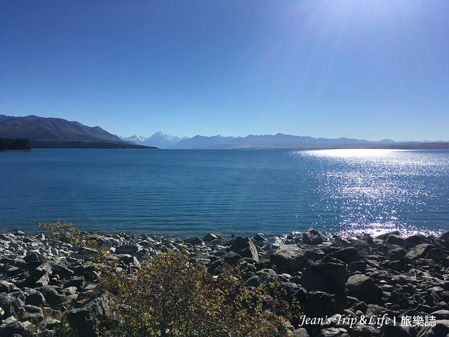 普卡基湖 Lake Pukaki 遊客中心附近