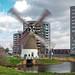 Windy day by the 'Mallemolen' te Gouda