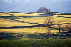 Photo of Shap, Cumbria