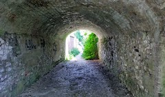 Photo of Tunnel at Castle Lane, Wallingford