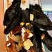 Blackwater National Wildlife Refuge Gift Shop