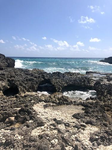 Tropical Retreats, February 2020