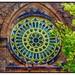 Buffalo - New York  - Trinity Episcopal Church - Historic - 371 Delaware Ave - Stain Glass Rose Windows