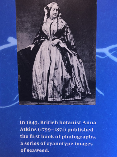 Anna Atkins, First (?) Female Photographer, in 1861