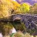 Fragile Bridge, Catbells, Cumbria, Lakes District, England