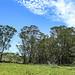 07 Parque Nacional de Santa Teresa