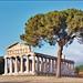 Le temple de Cérès (Paestum, Italie)