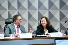11-03-20 Senador Roberto Rocha preside a  Comissão Mista da Reforma Tributária que recebeu a professora Rita de La Feria - Foto Gerdan Wesley (2)