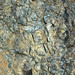 Weathered serpentinite (East Dover Ultramafic Body, Ordovician; Copperhead Road quarry, near East Dover, Vermont, USA) 8