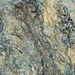 Weathered serpentinite (East Dover Ultramafic Body, Ordovician; Copperhead Road quarry, near East Dover, Vermont, USA) 6