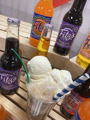 "Root Beer Floats • <a style=""font-size:0.8em;"" href=""http://www.flickr.com/photos/186296875@N03/49649297106/"" target=""_blank"">View on Flickr</a>"