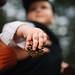 Acorn in baby hand`s closeup