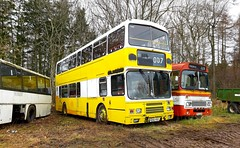 Photo of Ex Lothian Volvo Olympian M202VSX