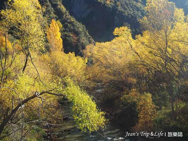 步道兩旁有樹木可遮涼